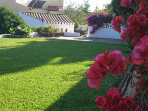 lush green lawn in portugal